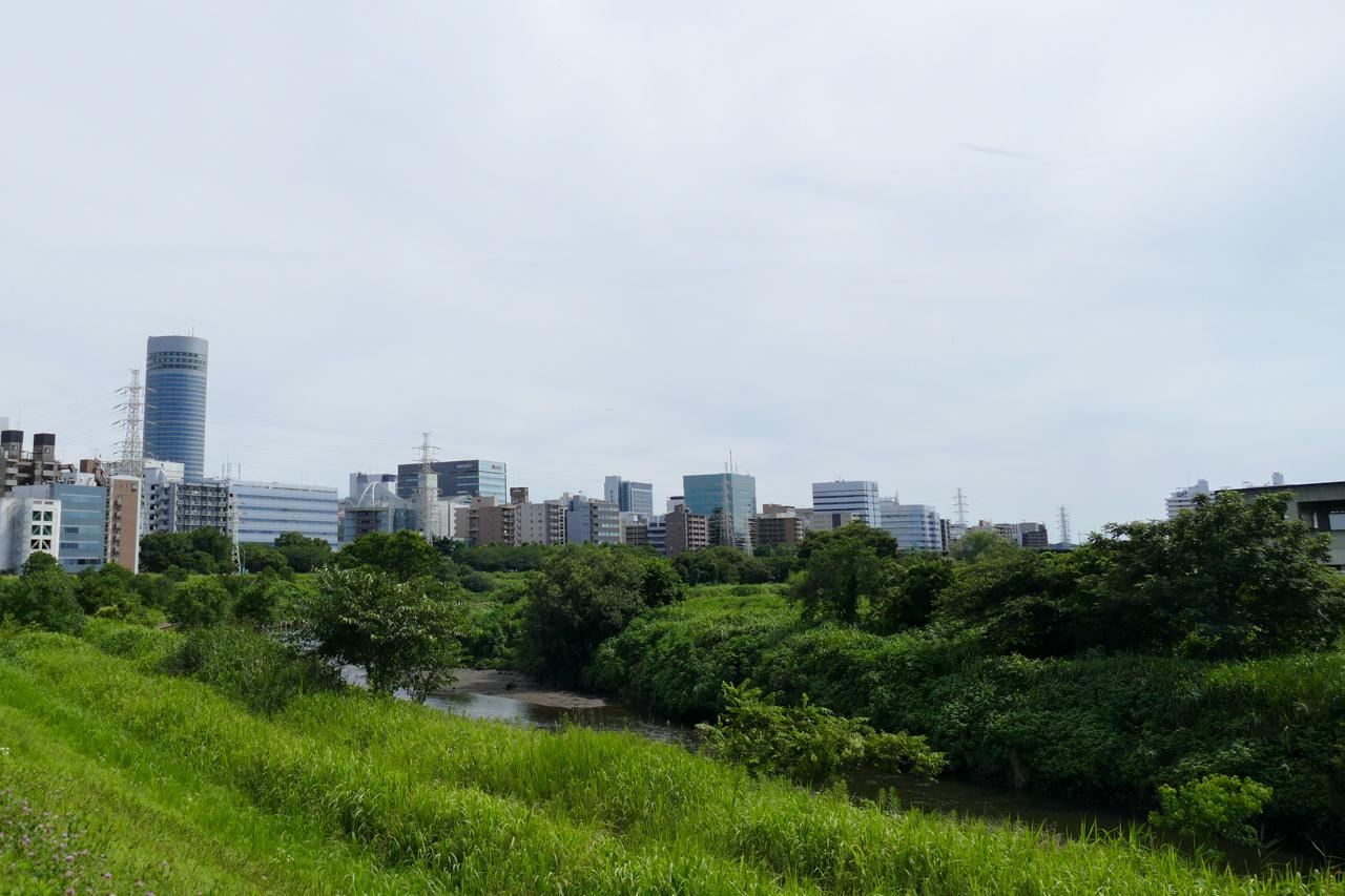 鶴見川と鳥山川の合流
